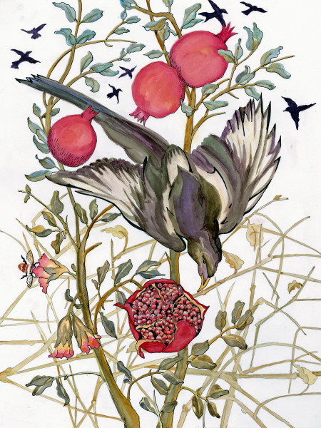 art by Ouida Touchon from New Mexico, Magpie and Pomegranate, watercolor- nature, for sale as archival reproductions in assorted sizes