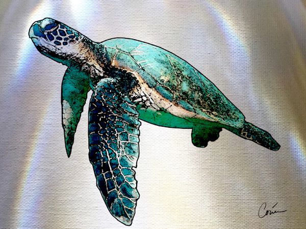 Gorgeous Sea Turtle on a White Background with light effects