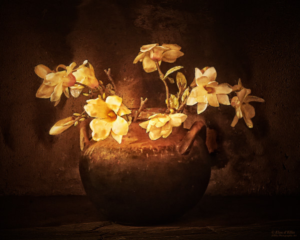Warming The Hearth, d'Ellis Photographic Art photographs, Elsa