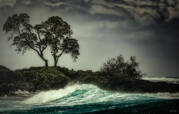 Photo of Emerald Wave, d'Ellis Photographic Art photographs, Elsa