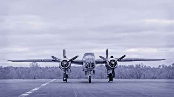 B-25 Mitchell WW2 Vintage Tondelayo Monochrome fleblanc