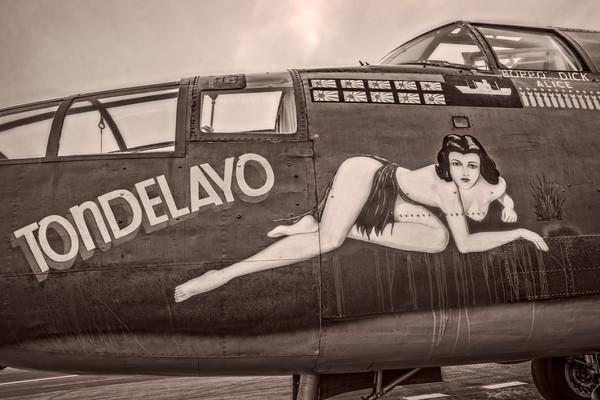 B-25 Mitchell WW2 Warplane Tondelayo Warm Tone fleblanc