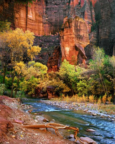 Zion National Park 57