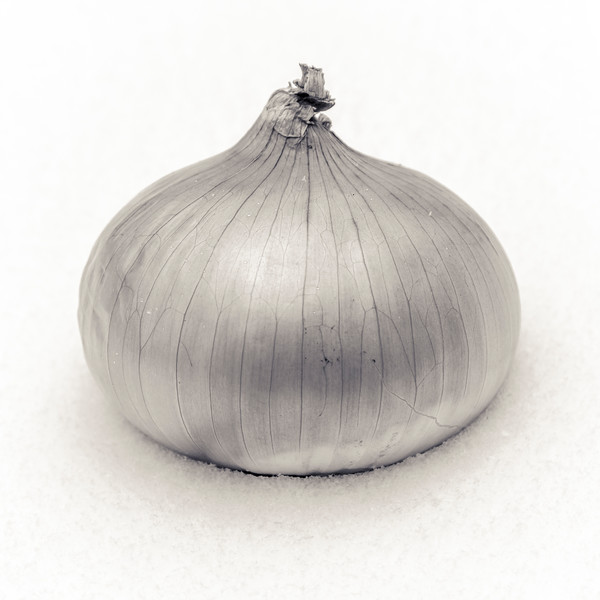 Snow Onion is a fine art photograph by Todd Suttles