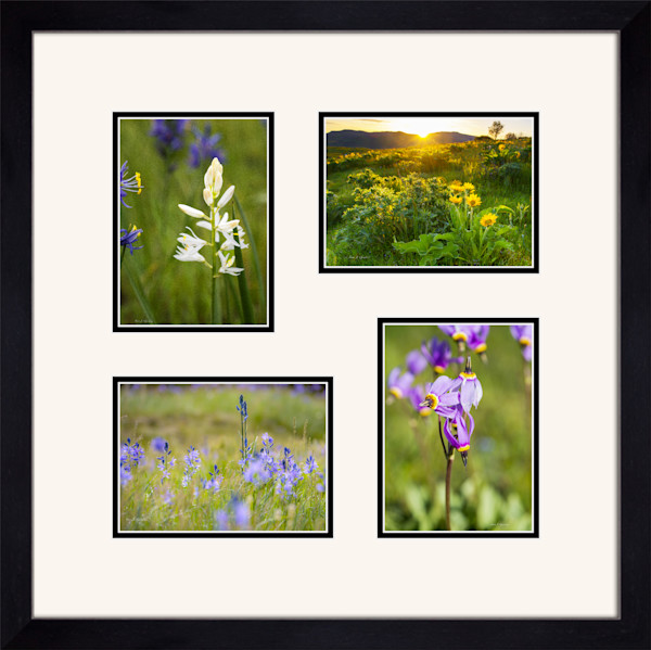 Four 5x7 Paper Prints 20x20 Black Flat Frame