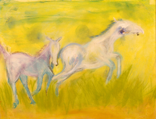 Horse Art & Oil Paintings for Sale - Connecticut | Pam White Art