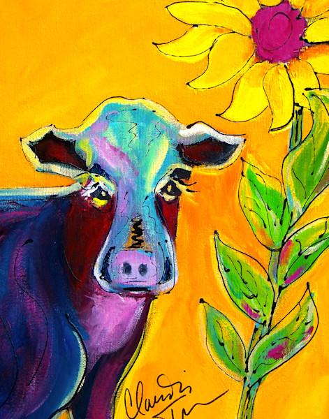 Kansas Cow