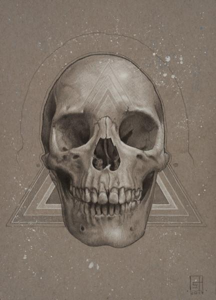 Skull Visions