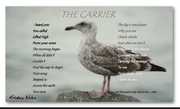 The Carrier Photo-Poetry Print