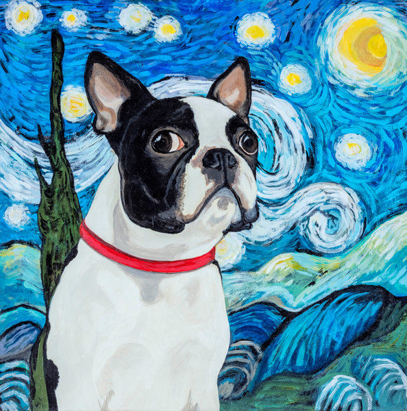 Buy a Boston Terrier in front of a whimsical Starry Night.