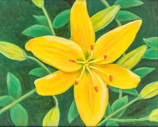 Debbie Stone Paintings