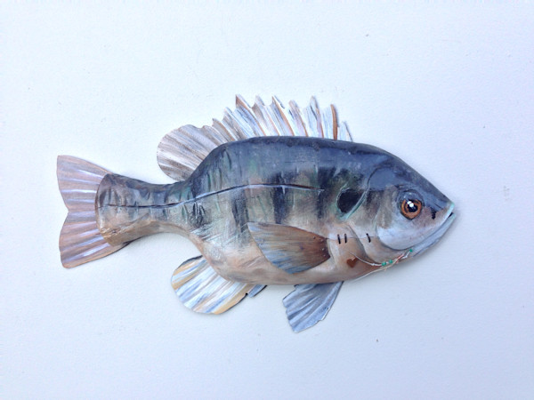 Buy Louisiana Perch wall sculpture