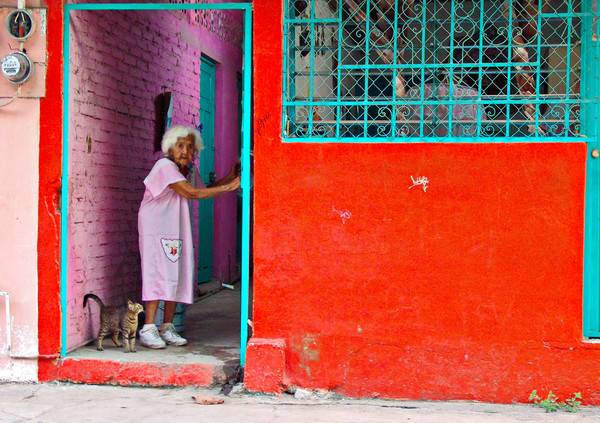 Woman in Purple with Cat
