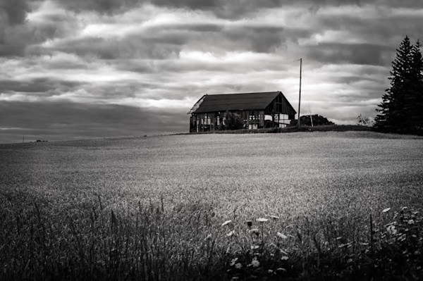 Black white photograph of an abandoned barn in rural ontario for sale as fine