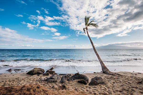 Lonesome Palm Maui
