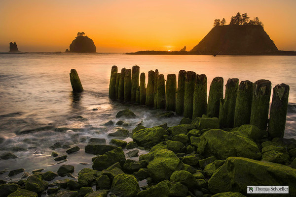 An original fine art print just released by photographer Tom Schoeller! La Push harbor radiates with dramatic and vivid color, the perfect solution for interior wall decor.
