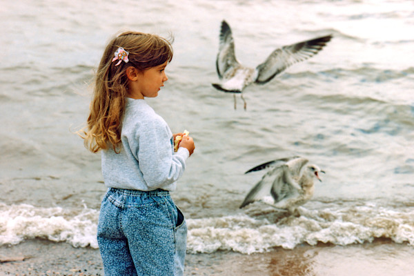 Pretty little girl feeding gulls on the shore — fine art photograph