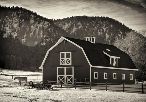 B&W Photo Colorado Horse Barn