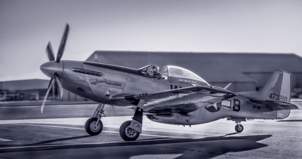 P-51 Mustang Combat Ready Navy Restored Military WWII fleblanc