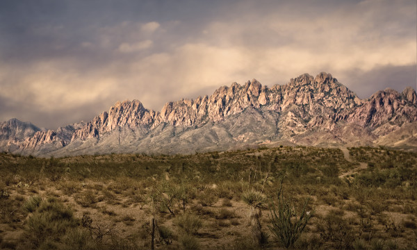 Photographs of Organ Mountain Spires | d'Ellis Photographic Art by Bill