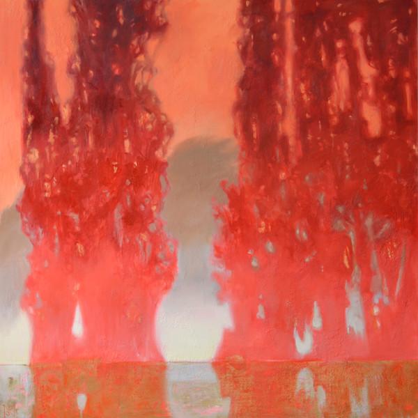 Ombre Cedars II