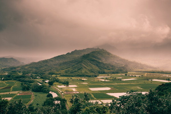 Mountain View Kauai