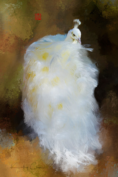 "Digitally ""Painted"" art images, are for sale by Kathy Chin. These bird photographs can arrive at your home, printed by our professional printers on your choice of metal, canvas, or Fine art photo papers."