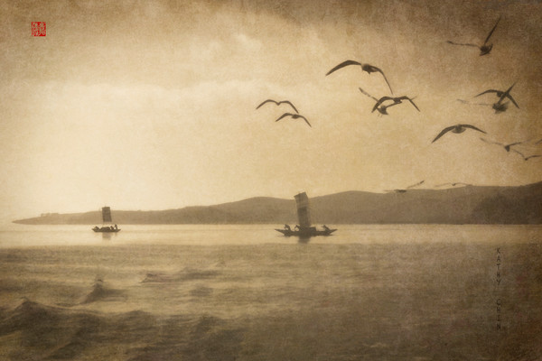 Dienchi Lake Fishing with Gulls