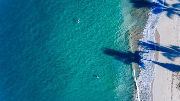 Maui Shoreline Swimmers