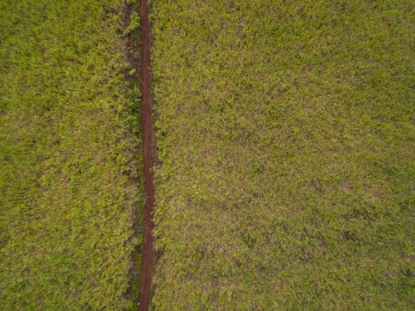 Sugarcane Road Aerial