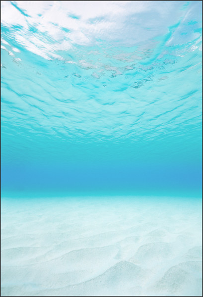 Steve Wrubel | Oceans