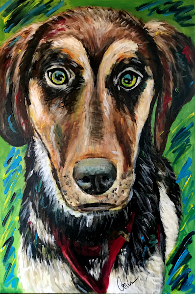 Lola Animal Paintings Custom Work