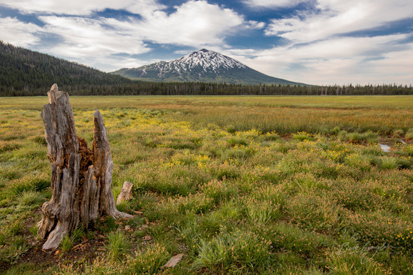 Mt Bachelor landscape photo for sale