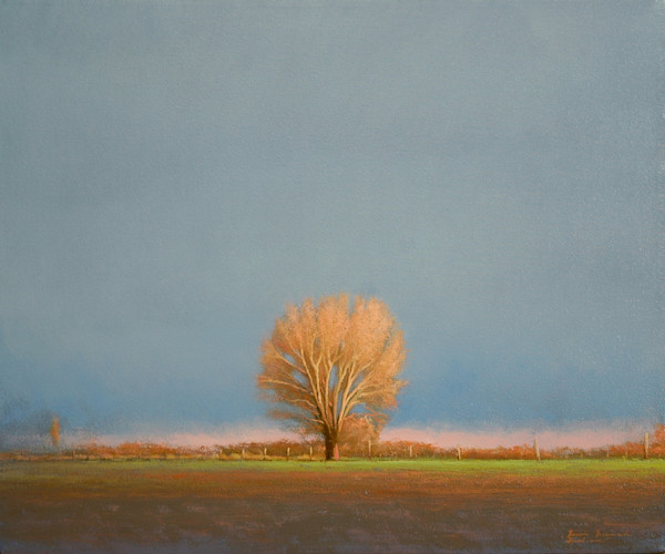 Shop for original paintings like Irradiance, oil on canvas by Bruce Brainard at Matt McLeod Fine Art Gallery.