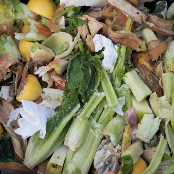 Brooklyn Compost Compositions
