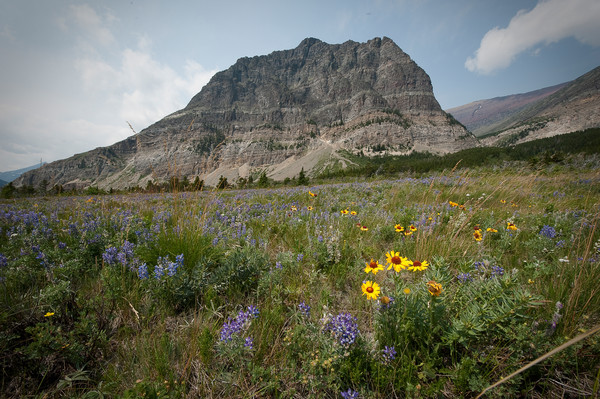 Glacier National Park 100th Anniversery