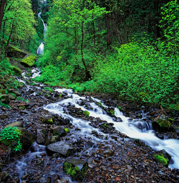 Spring Columbia River Gorge photograph for sale by Richard Stefani – Stefani Fine Art.