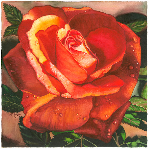Rich Red Rose - Original