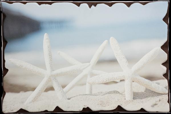 """Sand Stars"" Artisan Wood Print - 18""x12"""