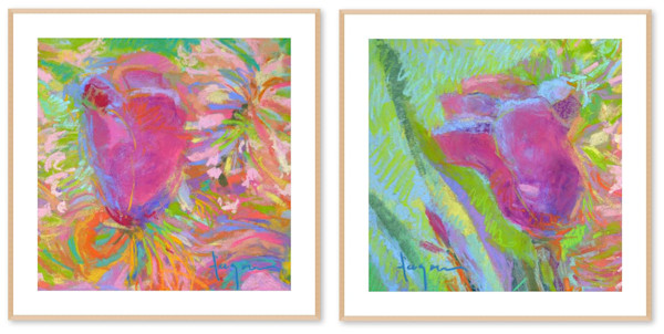 Tulip Pair Fine Art Prints Dorothy Fagan Collection