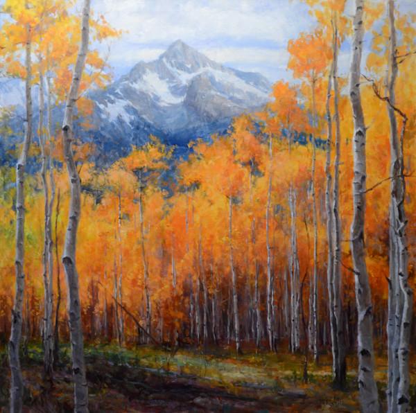Landscape prints.