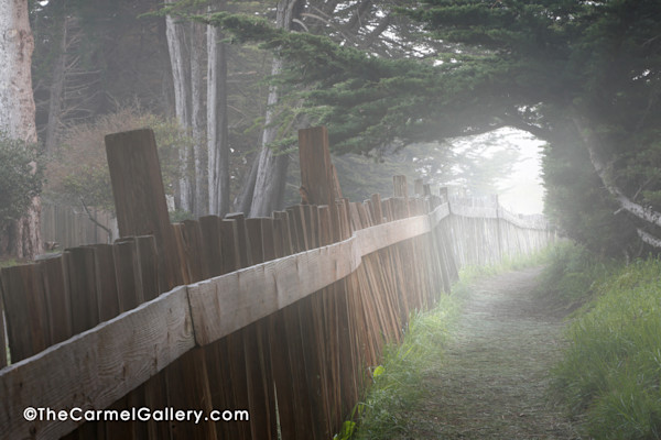 Dunes trail fog at daybreak in Sea Ranch, California