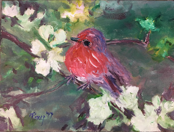Fluffy Robin Chick in White Cherry Blossoms original Oil Painting