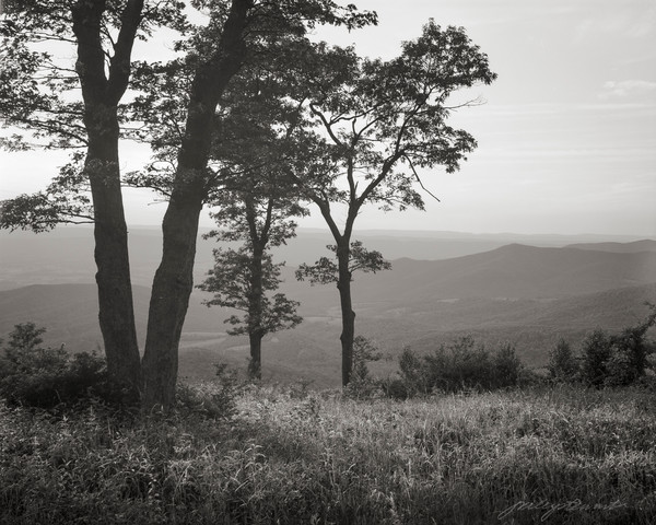A Quiet Evening on the Blueridge