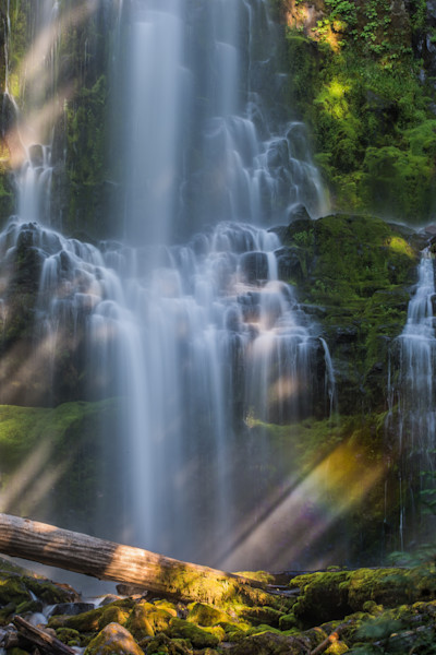 Rainbow and Proxy Falls Photo for sale by Barb Gonzalez Photography