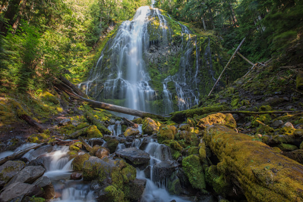 Stunning Proxy Falls Waterfall Photo for Sale: Barb Gonzalez Photography