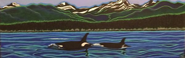 Alaskan Killer Whales Head Towards California