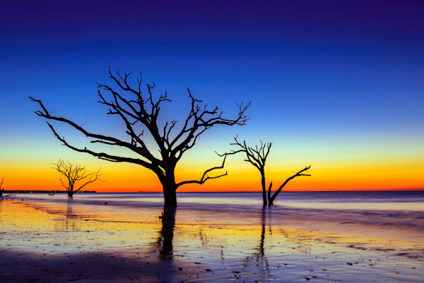 Botany Bay Sunrise Photograph for sale as Fine Art