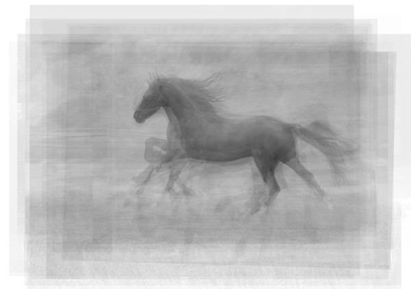 Overlay art – contemporary fine art prints of a Running Horse