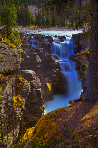 The Athabasca Falls. |Canadian Rockies | Rocky Mountains | Banff National Park|